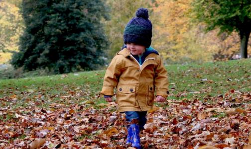 Врач запретила аллергикам фотографироваться с опавшими листьями