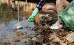 Greenpeace рассказал, чем загрязнены берега рек и озер Петербурга