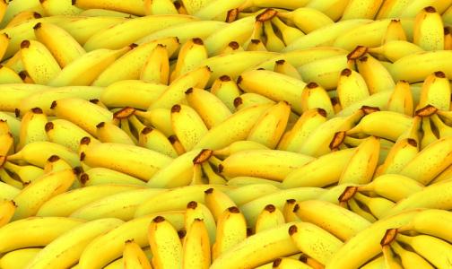В Петербург вместе с бананами из Эквадора приехал переносчик холеры