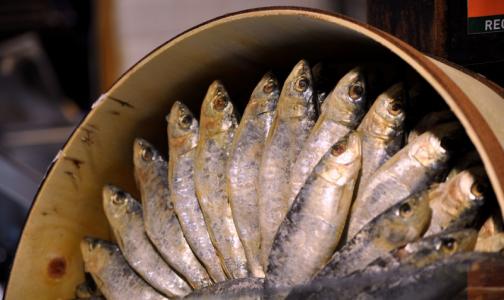 В Роскачестве определили рыбные консервы, которые нельзя есть