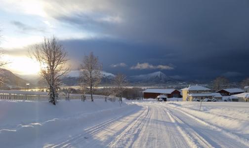 Врач и блогер Алексей Водовозов назвал способы спастись от «зимних» болезней