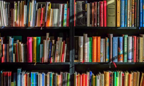 Врачи добились приостановки продажи книг для антипрививочников