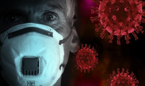 В Петербурге умер третий пациент с коронавирусом