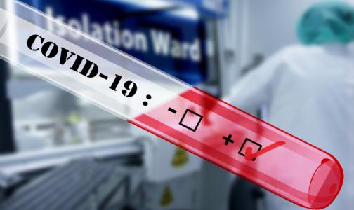 Россияне смогут сдать платный тест на коронавирус на дому