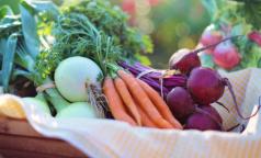 Эксперты ВОЗ рассказали, какие продукты лучше покупать сидящим в изоляции