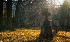 В Петербурге хоронить умерших с COVID-19 разрешили на двух кладбищах