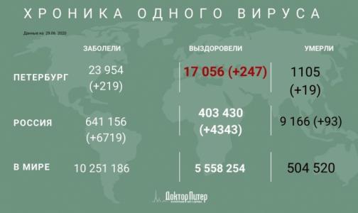 За сутки коронавирус выявили у 219 петербуржцев