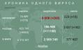 За сутки коронавирус выявили у 376 петербуржцев
