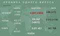 Число заразившихся коронавирусом петербуржцев увеличилось на 380