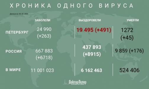 В Петербурге за сутки коронавирусом заразились 263 человека