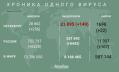 В Петербурге выявили 256 заразившихся коронавирусом