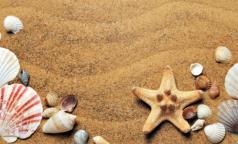 В Роспотребнадзоре назвали инфекции, которыми можно заразиться на пляже. Некоторые из них страшнее ковида