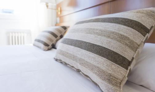 Роспотребнадзор: В регионах появились тропические постельные клопы
