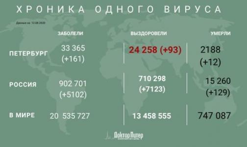 За сутки коронавирус выявили 5 102 россиян