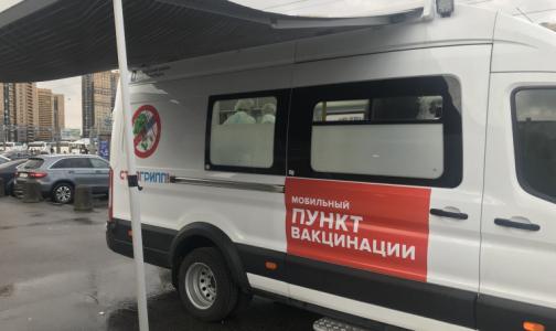 Комздрав: Бесплатная квадривакцина от гриппа может прийти в Петербург в октябре