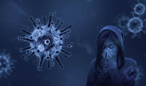 Представители Минздрава едут в Петербург из-за критической ситуации с коронавирусом