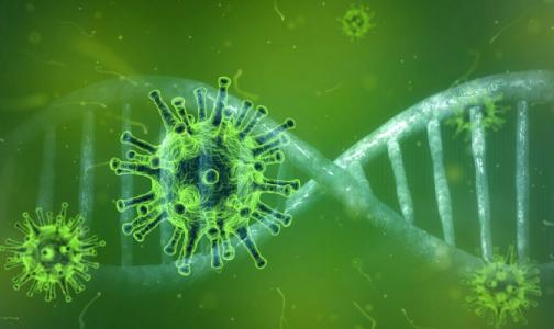 """Ученые: Благодаря """"родственному вирусу"""" у людей могут появиться антитела к COVID-19"""
